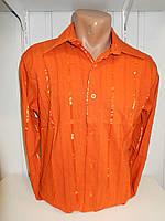Рубашка мужская DEGER длинный рукав,полосы,  001 купить рубашку