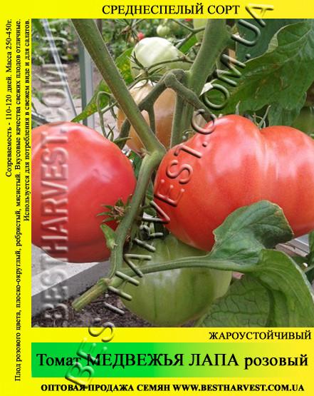 Семена томата Медвежья Лапа розовый 50гр