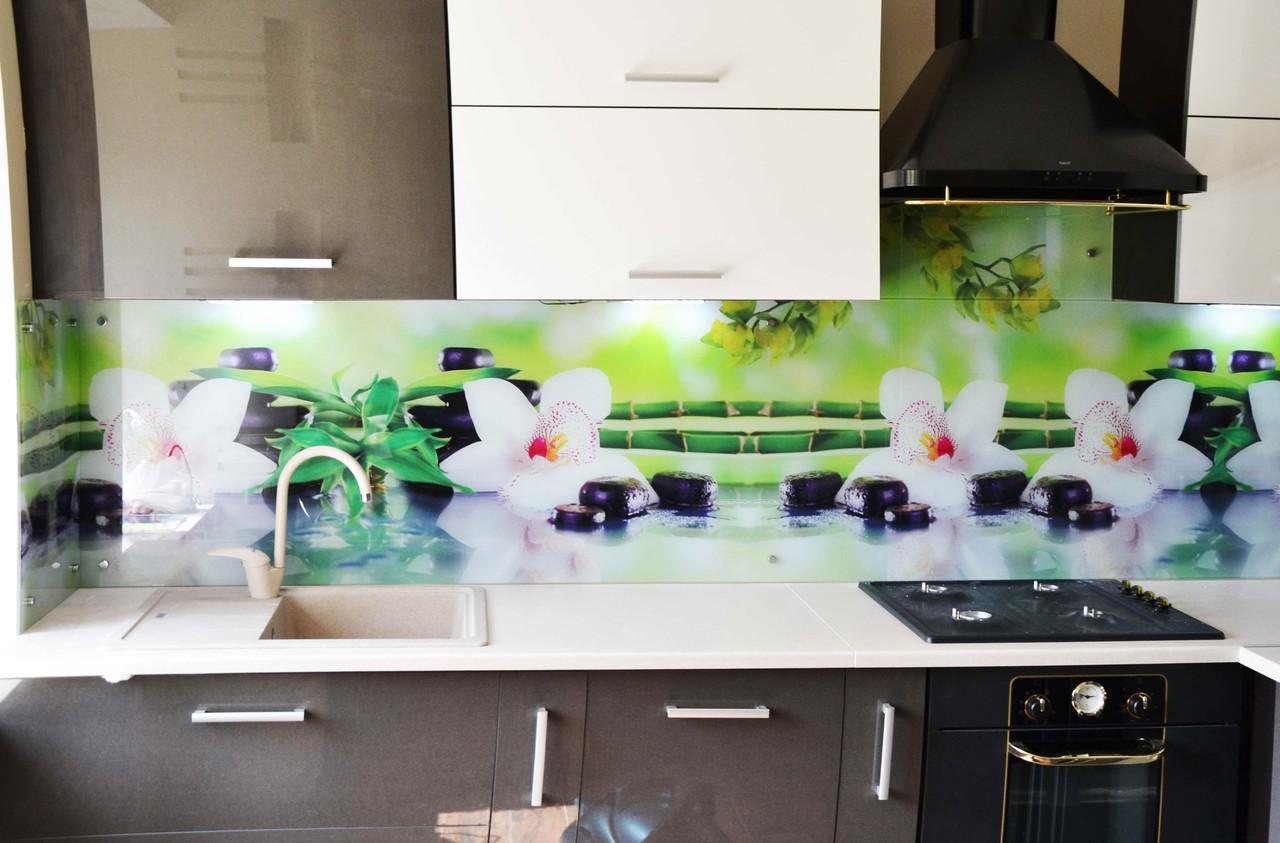 Стеновая панель для кухни из стекла