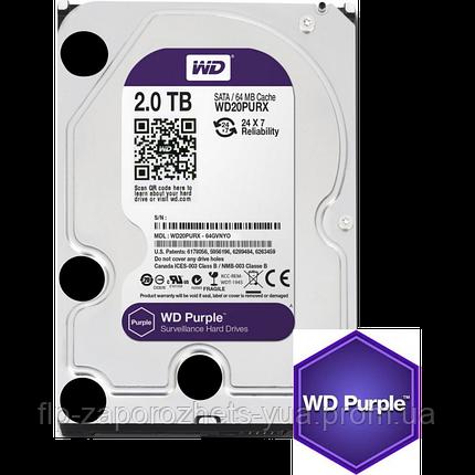 Жесткий диск Western Digital Purple 2TB 64MB WD20PURX 3.5 SATA III, фото 2