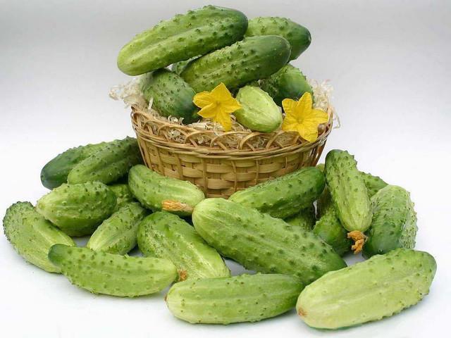 Огірки Голландські