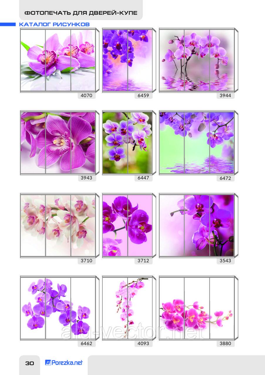 Рисунки фотопечати на цветочную тематику