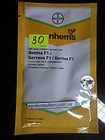 Семена огурца Беттина F1 (Nunhems) 500 семян — партенокарпик, ранний гибрид (38-40 дней), фото 1