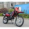 Мотоциклы Musstang теперь в продаже!