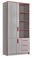 Шкаф книжный 800 2Д3Ш РИО