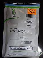Семена моркови Вита Лонга  (Бейо / Bejo) 50 г. семян — поздний гибрид (145 дней), тип Флакке