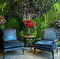 Стены из мха лесного плоского  от ARTIS GREN