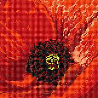 """Схема для вышивки бисером """"Мак"""", 17х17 см"""