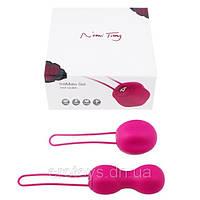 Комплект вагинальных шариков Nomi Tang IntiMate Kegel Set