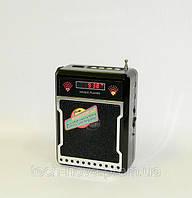 Радиоприемник цифровой Atlanfa AT-9133 (FM, USB, SD), фото 1