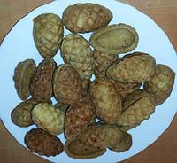 Электропечь  кондитерская ПЭ-6 для выпечки печенья (орешница)