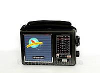 Радиоприемник переносной Mason RM-894, фото 1