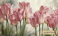 Папертоль Нежность тюльпанов РТ150088
