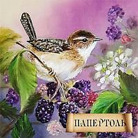 Папертоль Летняя пташка РТ150102