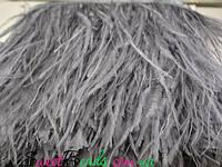 Перья страуса на ленте, серый