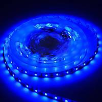 Светодиодная лента SMD3528 - синяя, 60 светодиодов/м, 12 В DC, 1 м, IP20