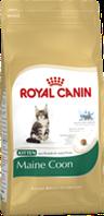 Корм сухой Роял Канин для кошек породы Мейн Кун Royal Canin Maincoone Kitten 4 кг