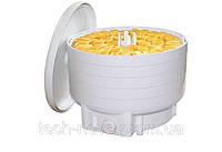 Сушилка для грибов и продуктов БелОМО (500Вт, 5 лотков, пастила) , фото 1