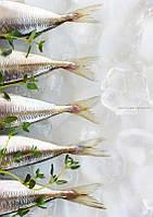 Гильотина головы и хвоста рыбы AGK Kronawitter 113