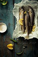Полуавтомат потрошения рыбы до 400 шт/час AGK Kronawitter