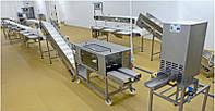 Линия переработки рыбы 750 кг/ч AGK Kronawitter Fish Line