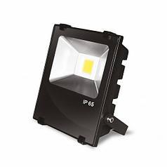 EUROELECTRIC LED COB Прожектор с радиатором 10W 6500K modern