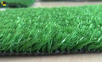 Levada Зеленый