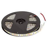 Светодиодная лента SMD5050 - белый, 60 светодиодов, 12 В DC, 1 м, IP65