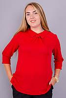 Кортни. Женская блузка больших размеров. Красный.