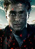 Картина 40х60 см Гарри Поттер Мальчик который выжил
