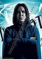 Картина 40х60 см Гарри Поттер Снейп