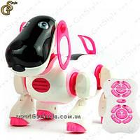 """Радиоуправляемый робот-собака - """"Smart Dog"""", фото 1"""