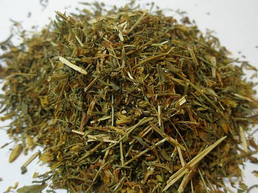 Зверобой трава