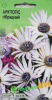 "Семена цветов Арктотис гибридный белый, 0,3 г, ""Елітсортнасіння"",  Украина"