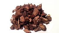 Лопух большой корень 100 грамм Прибалтика, фото 1