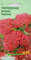"Семена цветов Тысячелистник вишневый, 0.1 г, ""Елітсортнасіння"", Украина"