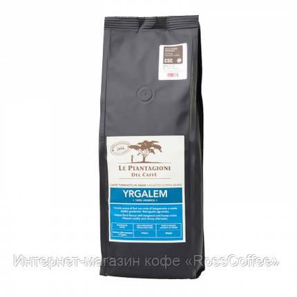 Кофе в зернах Le Piantagioni del Caffe Etiopia Yrgalem 500 г, фото 2
