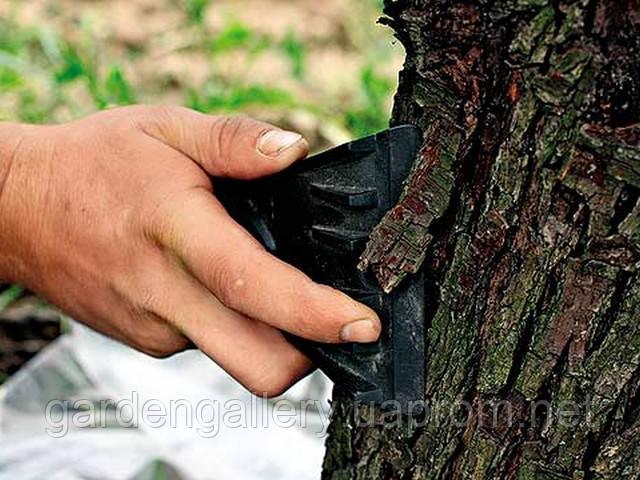 Подготовка к побелке деревьев