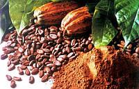 Какао порошок 100%
