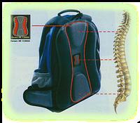 Советы по выбору школьного ортопедического рюкзака