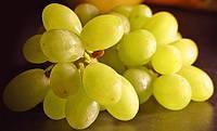 Виноградной косточки рафиниров. масло
