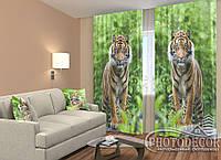 """ФотоШторы """"Два тигра"""" 2,5м*2,0м (2 полотна по 1,0м),тесьма"""