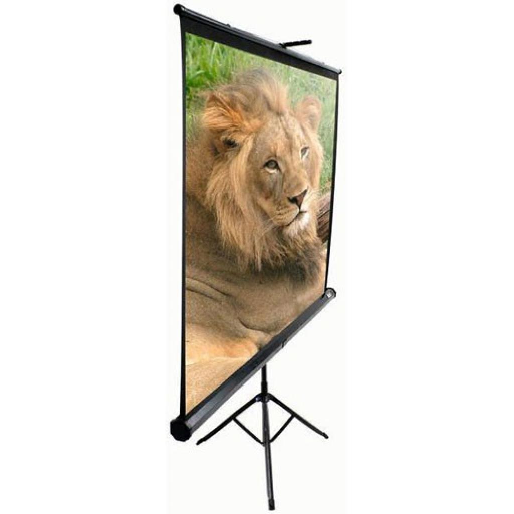 Elite Screens мобильный напольный 119 (1:1) 213.4 х 213.4 (T119NWS1) White Case