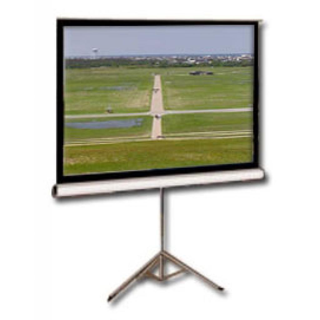 Экран Elite Screens 113 (T113NWS1)