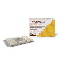 Биологически активная добавка PROPOLEUS globules