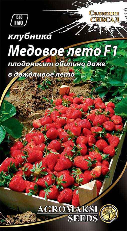 Полуниця 'Медове літо' F1 0.01 г