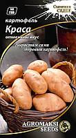 Картофель 'Краса'