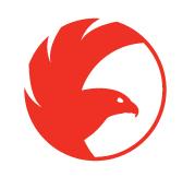 логотип бренда молодежно одежды Ястреб