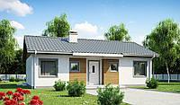 MS-027 . Маленький дом с двухскатной крышей., фото 1