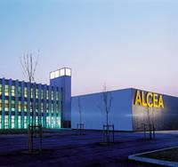 Информация Alcea